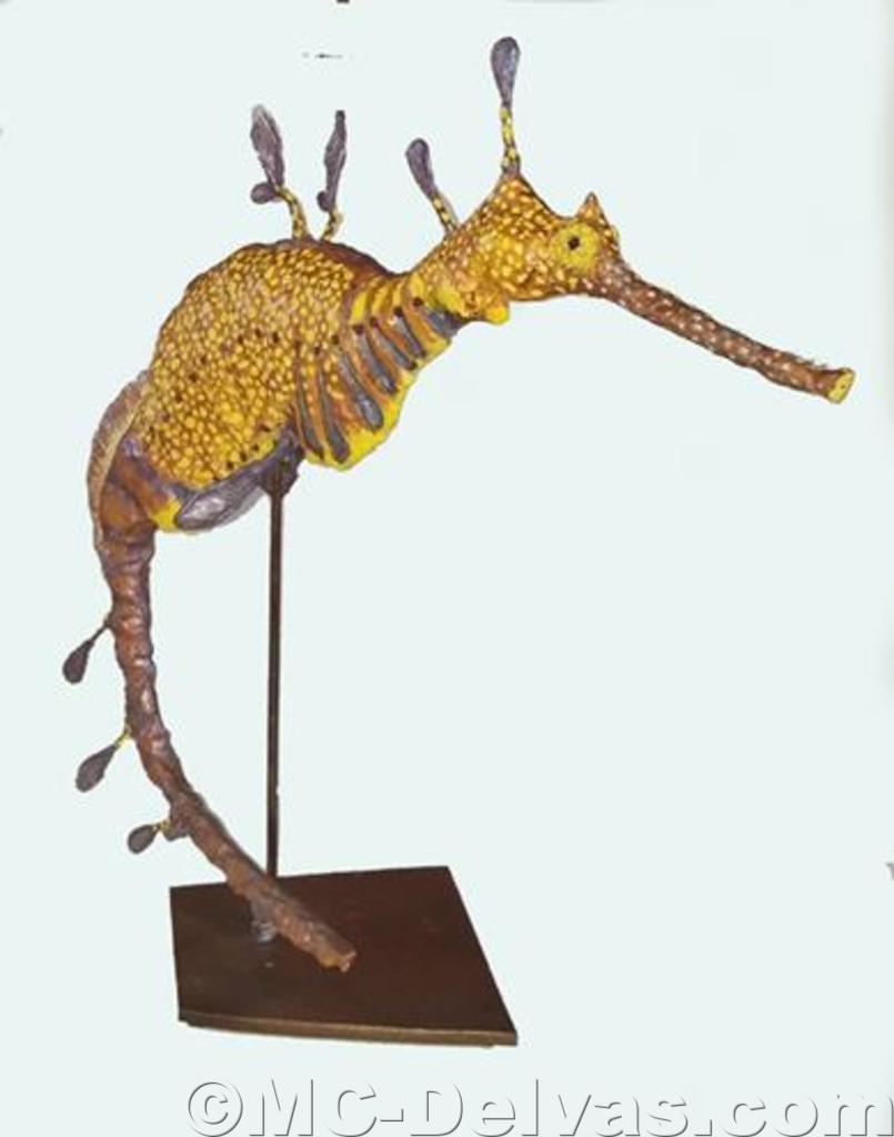 Hippocampe feuillu (H 40cm x L 18cm)